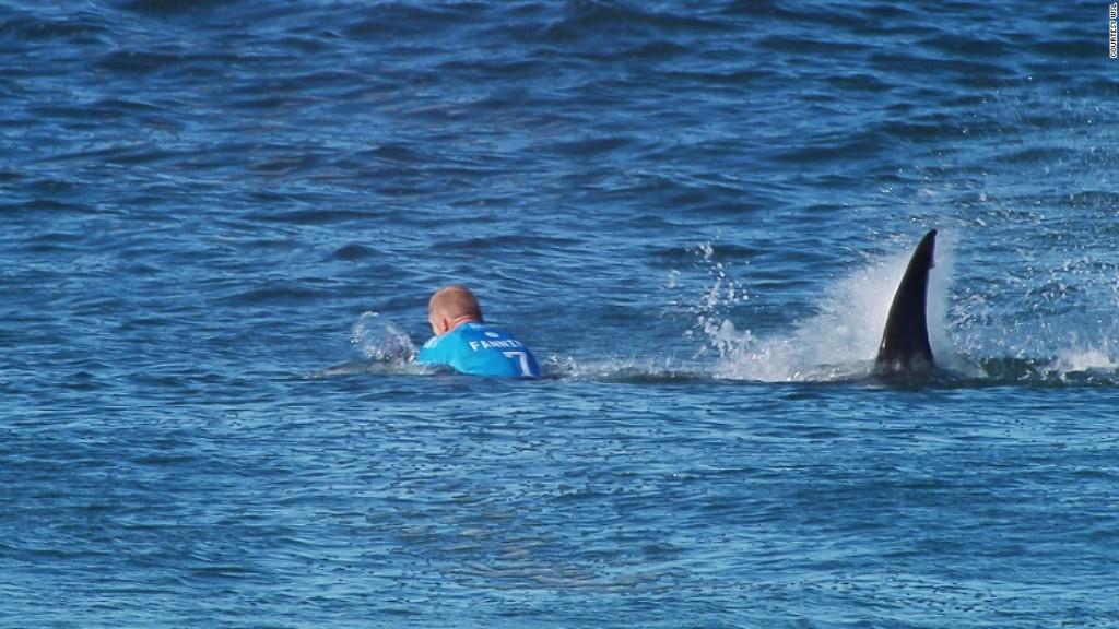 fanning-shark-attack-super-169