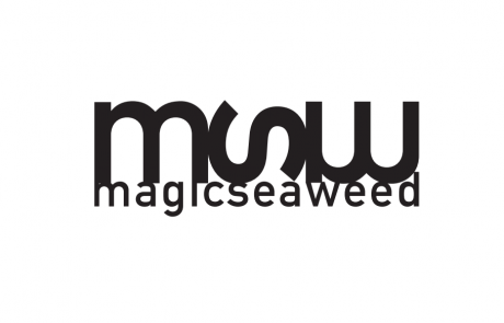 MSW – SEAT PRO NETANYA 2017