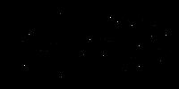 seadnysurfboards_blackoval-cropped2